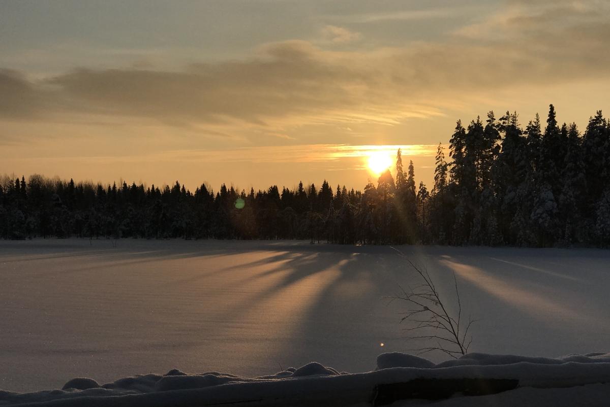 зимняя дорога в голубино
